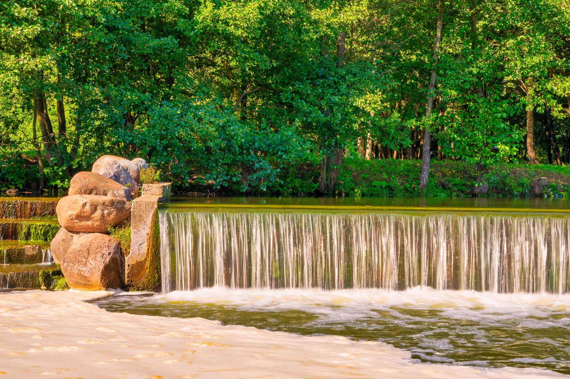 Парк Дрозды