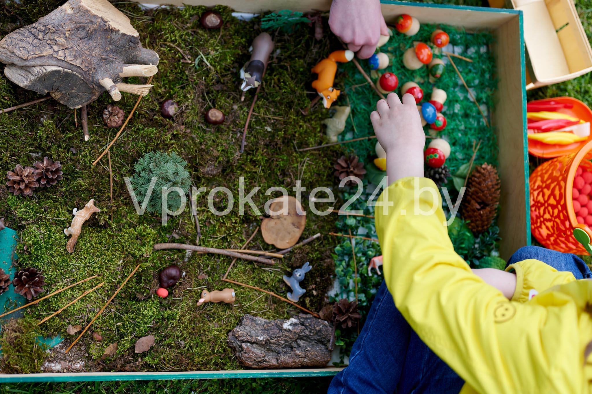 Праздник в Ботаническом саду День защиты детей 2021